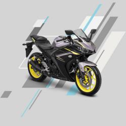 Yamaha All New R25
